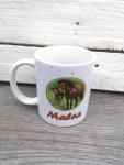 Pferde mit Wunschnamen